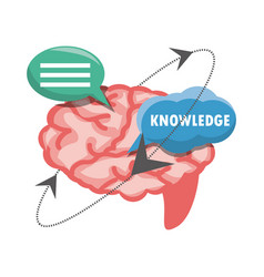 chat bubbles with brain knowledge vector image