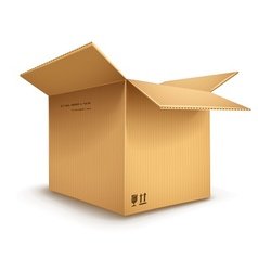 cardboard box opened vector image vector image