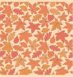 autumn pattern with oak poplar beech leaves vector image