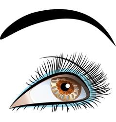 Beautiful brown eyes vector