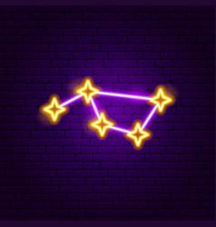 constellation neon label vector image