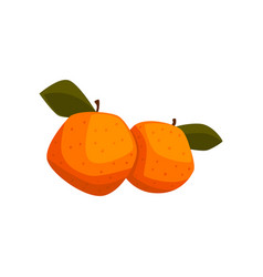 Fresh tangerine fruits with green leaves vector