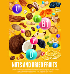 multivitamins complex in nuts and dried fruits vector image