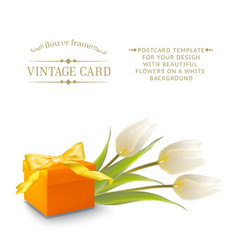 Tulips and gift box vector