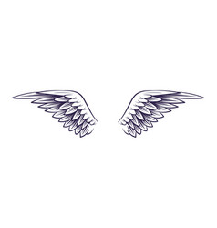 wing hand drawn angel wings with feathers vector image