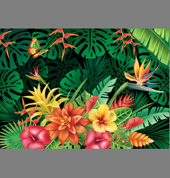 With tropical plants vector