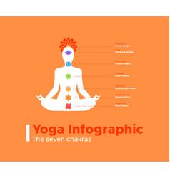 yoga infographic seven meditation chakras vector image