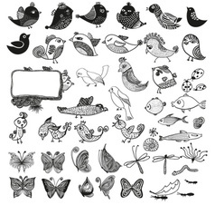 Birds and Butterly vector image