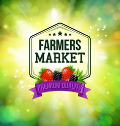 Farmers market poster Blurred background with vector image vector image