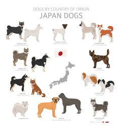 Dogs country origin japanese dog breeds vector