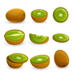 kiwi icon set cartoon style vector image