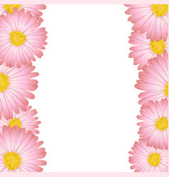Pink aster daisy flower border vector
