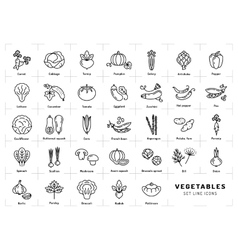 Vegetables icons isolated Spices logo Trendy vector image
