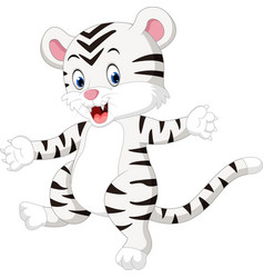 Cute baby white tiger vector