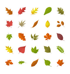Fall foliage flat icons vector