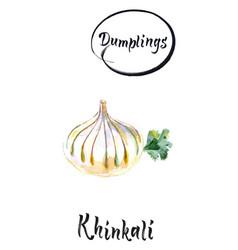 khinkali georgian dumplings vector image