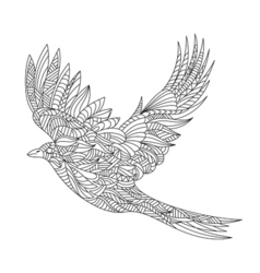 Monochrome hand drawn zentagle of magpie Coloring vector