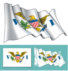 Waving flag of us virgin islands vector