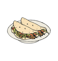 mexican food fajita or burrito vector image