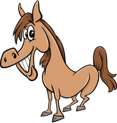farm horse cartoon vector image