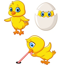 Cartoon happy chick collection set vector image