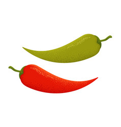 Chilli and jalapeno peppers vector