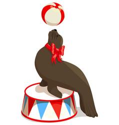 Circus seal with a ball vector