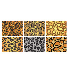 Collection leopard textures seamless prints vector