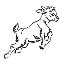 Goat-1 vector