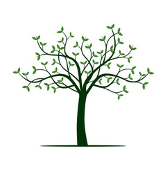 Green tree and leafs vector