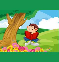 monkey reading book in garden vector image