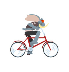 rabbit riding biker animal character using vector image