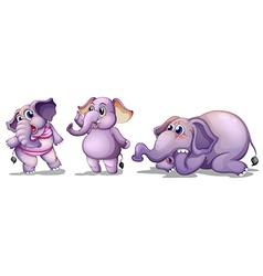 Three elephants vector