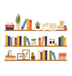 Book shelves rack books interior bookshelf vector