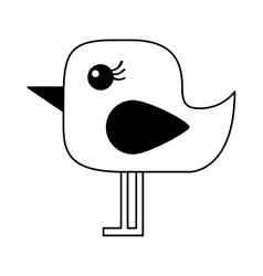 Cute bird isolated icon vector