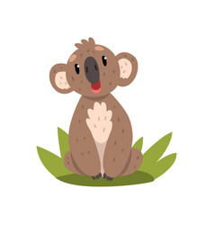 cute koala bear sitting on grass australian vector image