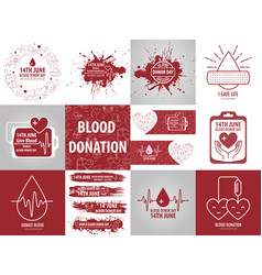 donation blood collection vector image