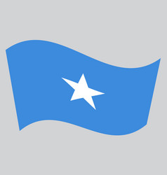 flag of somalia waving on gray background vector image