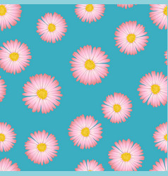 Pink aster daisy seamless on blue background vector