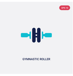 two color gymnastic roller icon from gym and vector image