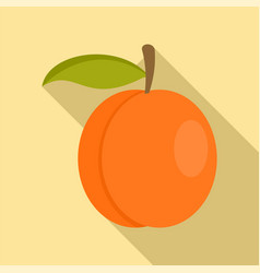 whole peach icon flat style vector image