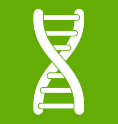 dna strand icon green vector image