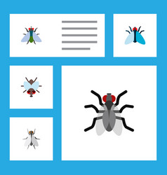 Icon flat fly set of mosquito tiny insect and vector