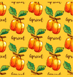 Apricot repeating pattern hand-drawn apricots vector