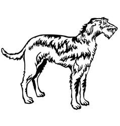 Decorative standing portrait of irish wolfhound vector