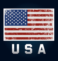 flag america grunge style vector image