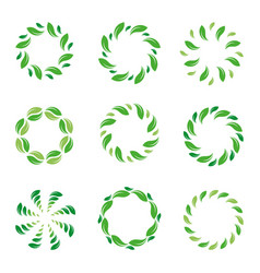 Frame leaf circle leaves organic green vector