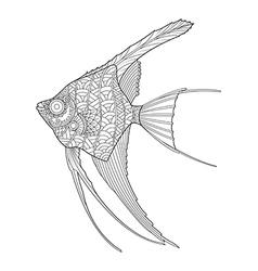 Hand drawn Angel fish coloring page vector