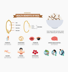 health benefits of rice infographics vector image