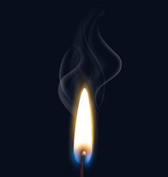 Realistic burning flame smoke composition vector